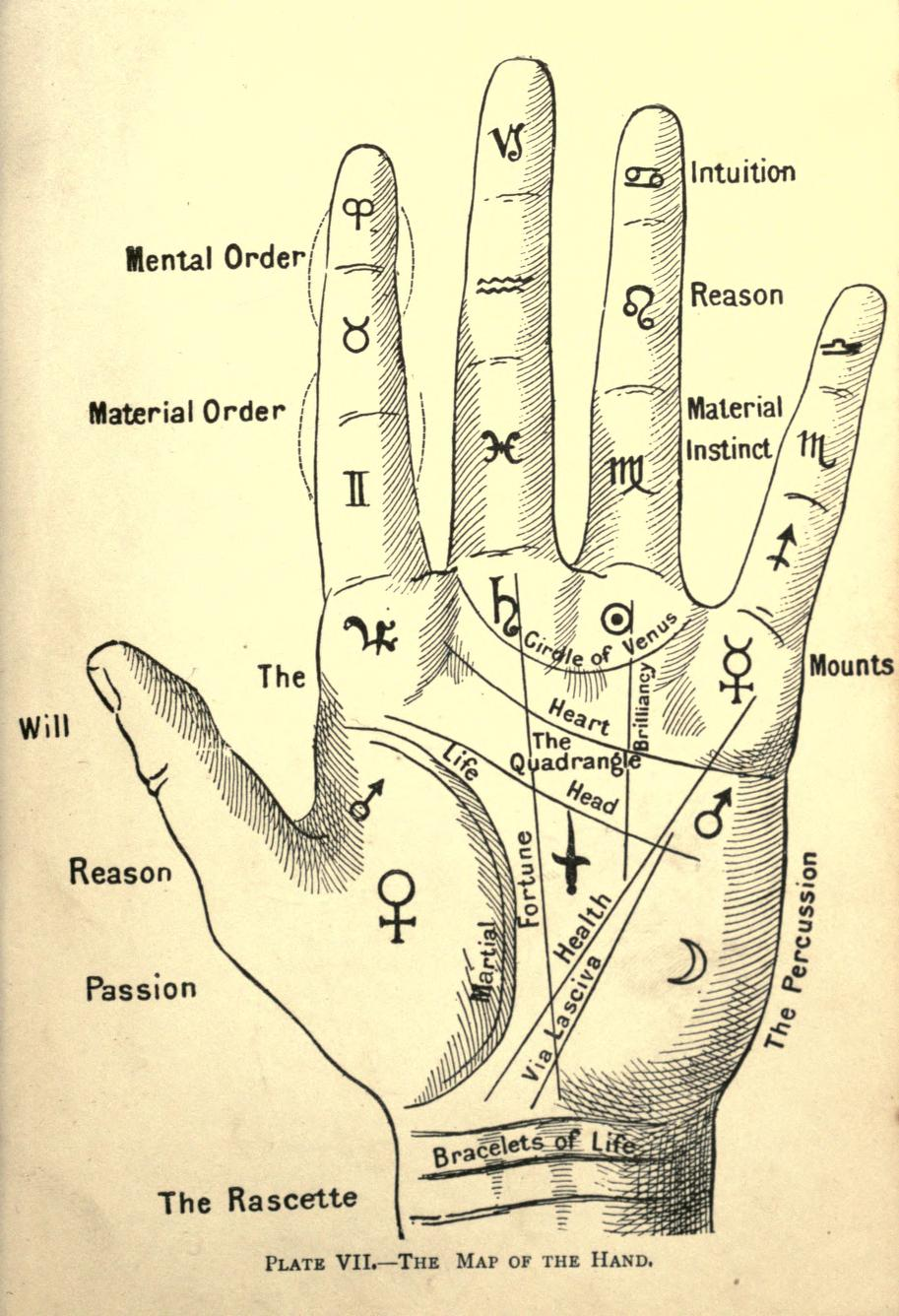 1481219943_vintage_palmistry_illustration_3.jpg