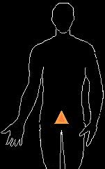 6 sacral chakra alignement